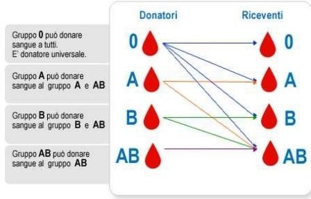 gruppi-sanguigni_page-0001